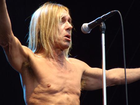 une des photos d'Iggy Pop que j'avais prise lors du TW Classic 2008